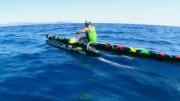 OC1 Catalina Relay Trailer